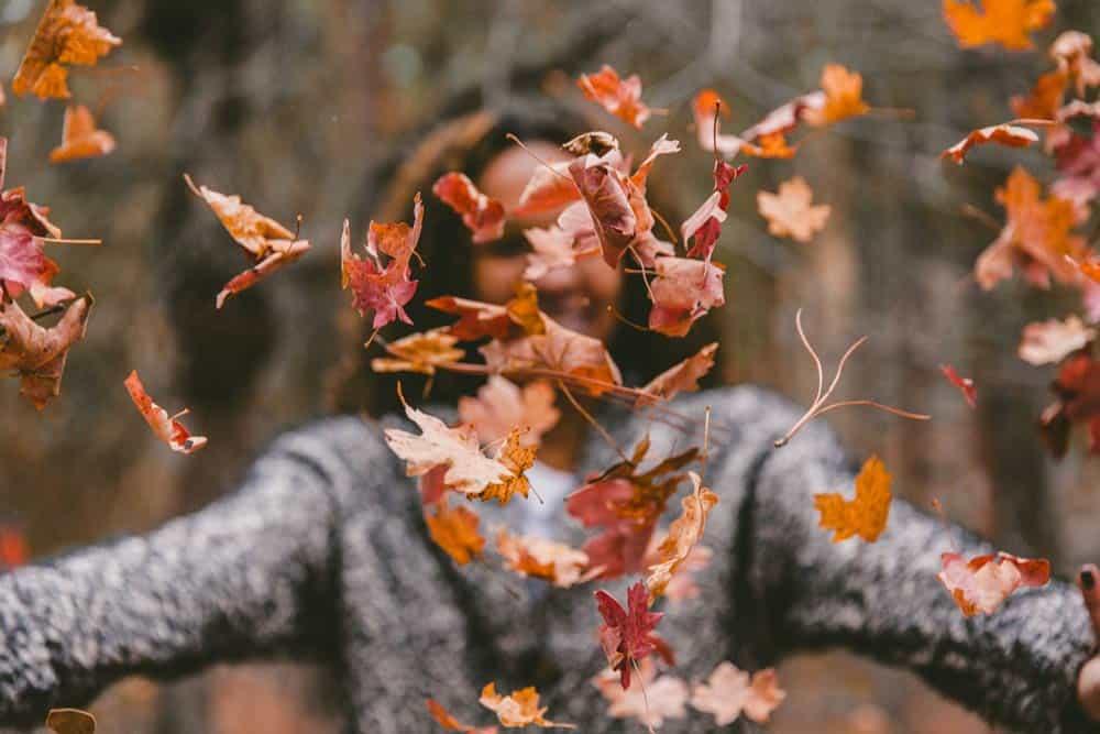 Pourquoi l'alopécie de l'automne ?